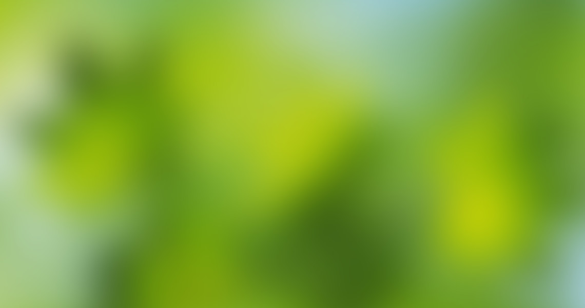 Blurred_Background_20[1]